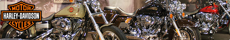 東京モーターサイクルショー 2013 ハーレーダビッドソン